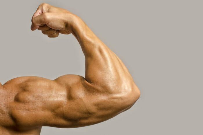 Testosterona: sinais de que está baixa e como aumentá-la
