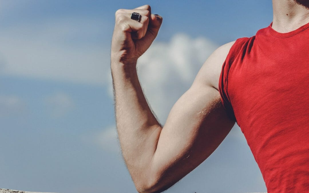Hipertrofia Muscular: o guia completo para ganhar músculos