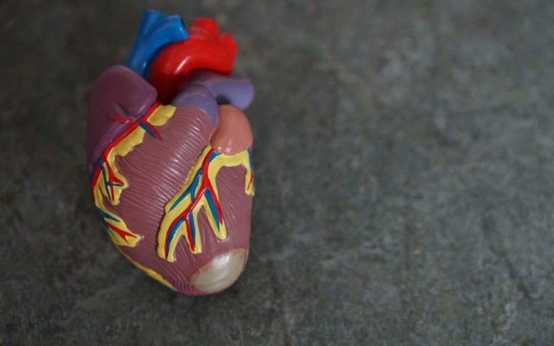 Qual a frequência cardíaca normal, alta e baixa por idade