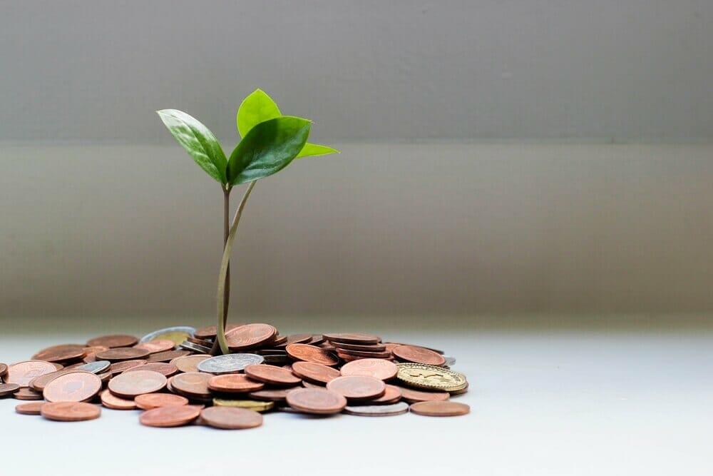 Saúde financeira: faça o teste e veja como melhorar a sua!